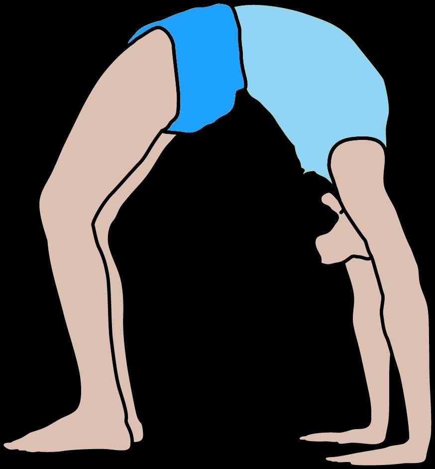 Yogahaltungen – Iyengar Yoga Institut Berlin